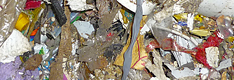 Domestic Waste and Municipal Solid Waste (MSW)